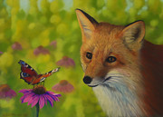 Wild Animal Pastels Posters - Fox and butterfly Poster by Veikko Suikkanen