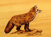 Red Pyrography Originals - Fox by Ron Haist