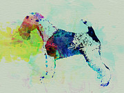 Fox Terrier Puppy Framed Prints - Fox Terrier Watercolor Framed Print by Irina  March