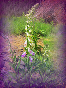 Foxglove Flowers Photos - Foxglove by Shelkay Bairn-Gart