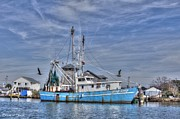 Shrimp Boat Photos - Foxy Lady at Port by Benanne Stiens
