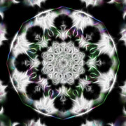 Black Background Mixed Media - Fractal Kaleidoscope Two - Filter Effects by Gina Manley