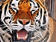 Tiger Fractal Photos - Fractal Smiling Tiger by Deniece Platt