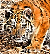 Tiger Fractal Photos - Fractal Tiger Cub by Deniece Platt
