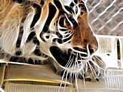 Tiger Fractal Photos - Fractal Tiger  by Deniece Platt