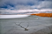 Frozen Lake Photos - Fractured by Cat Connor