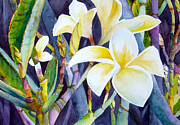 Fragrance Painting Prints - Fragrance Of Hawaii Print by Mary Anne Harkness