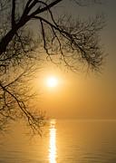 Framing The Golden Sun Print by Georgia Mizuleva