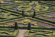 Landscaped Prints - France Villandry Print by Anonymous