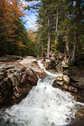 Carol Barrington - Franconia Notch in Early...