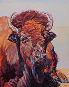 Bison Art - Frank by Patricia A Griffin