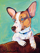 Canines Painting Framed Prints - Frankie Framed Print by Pat Saunders-White