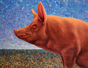 Palette Knife Metal Prints - Free Range Pig Metal Print by James W Johnson