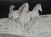 Horse Drawings Prints - Free Spirits Print by Steve Keller