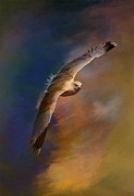 Beauty Digital Art Originals - Freedom....  by Andrzej  Szczerski
