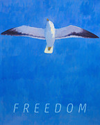 Flying Seagull Mixed Media Framed Prints - Freedom Framed Print by Lutz Baar