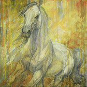 White Horse Paintings - Freedom by Silvana Gabudean