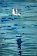 Seagull Pastels Acrylic Prints - Freedom to fly Acrylic Print by Sibella Talic