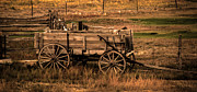 Brown Tones Framed Prints - Freight Wagon Framed Print by Robert Bales