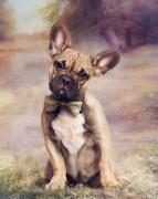 French Bulldog Print by Cindy Grundsten