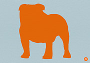 Bulldog Digital Art Posters - French Bulldog Orange Poster by Irina  March