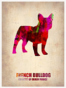 Cute Dog Framed Prints - French Bulldog Poster Framed Print by Irina  March