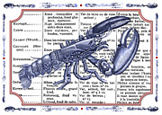 Red White And Blue Mixed Media Posters - French Cooking Dining Room Lobster Art Poster by Adspice Studios