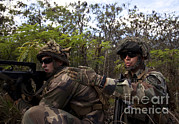 Military Training Prints - French Marines Scout Ahead Of A Patrol Print by Stocktrek Images