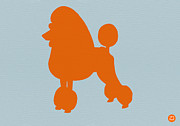 Dog Drawings Prints - French Poodle Orange Print by Irina  March