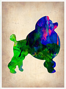 Colorful Art. Prints - French Poodle Watercolor Print by Irina  March