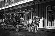 French Doors Digital Art Prints - French Quarter Carriage Ride New Orleans Print by Kathleen K Parker