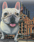 Counterculture Prints - Frenchie At Inner Harbor Baltimore Print by Ania M Milo