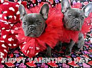 Weezy Art - Frenchie Cupids by Joelle Dewhurst