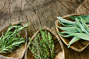 Mythja Photos - Fresh aromatic herbs  by Mythja  Photography