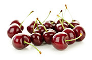 Cherries Posters - Fresh cherries on white Poster by Elena Elisseeva
