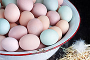 Blue Red And White Posters - Fresh Colorful Farm Eggs Poster by Stephanie Frey