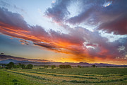 Hay Photos - Fresh Cut Hay and Colorful Sky by James Bo Insogna