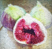 Fruit Still Life Mixed Media Posters - Fresh Figs Poster by Linda Woods