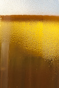 Brandon Alms - Fresh Golden Draft Beer...