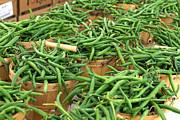 Fresh Green Beans In Baskets Print by Teri Virbickis