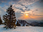 Winter Landscapes Photo Metal Prints - Fresh morning Metal Print by Davorin Mance