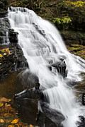 Franklin Posters - Fresh Natural Waterfall Poster by Christina Rollo