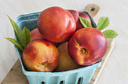 Fresh Picked Fruit Framed Prints - Fresh Nectarines Framed Print by Rich Franco