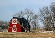 Farming Barns Prints - Fresh painted Red Barn Print by Yumi Johnson