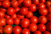 Fresh Food Metal Prints - Fresh Ripe Red Tomatoes Metal Print by Edward Fielding