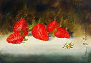 Strawberry Drawings Framed Prints - Fresh Strawberries Framed Print by Dan Redmon