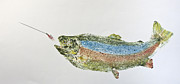 Fish Print Mixed Media Posters - Freshwater Rainbow Trout With Fly Poster by Nancy Gorr