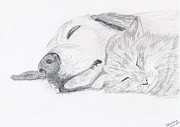Sleeping Dog Drawings Prints - Friends Print by Catia Silva