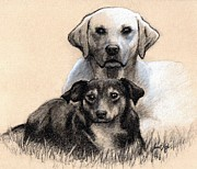 Janet King Drawings Metal Prints - Friends Metal Print by Janet King