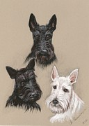 Scottish Terrier Paintings - Friends by Margaryta Yermolayeva